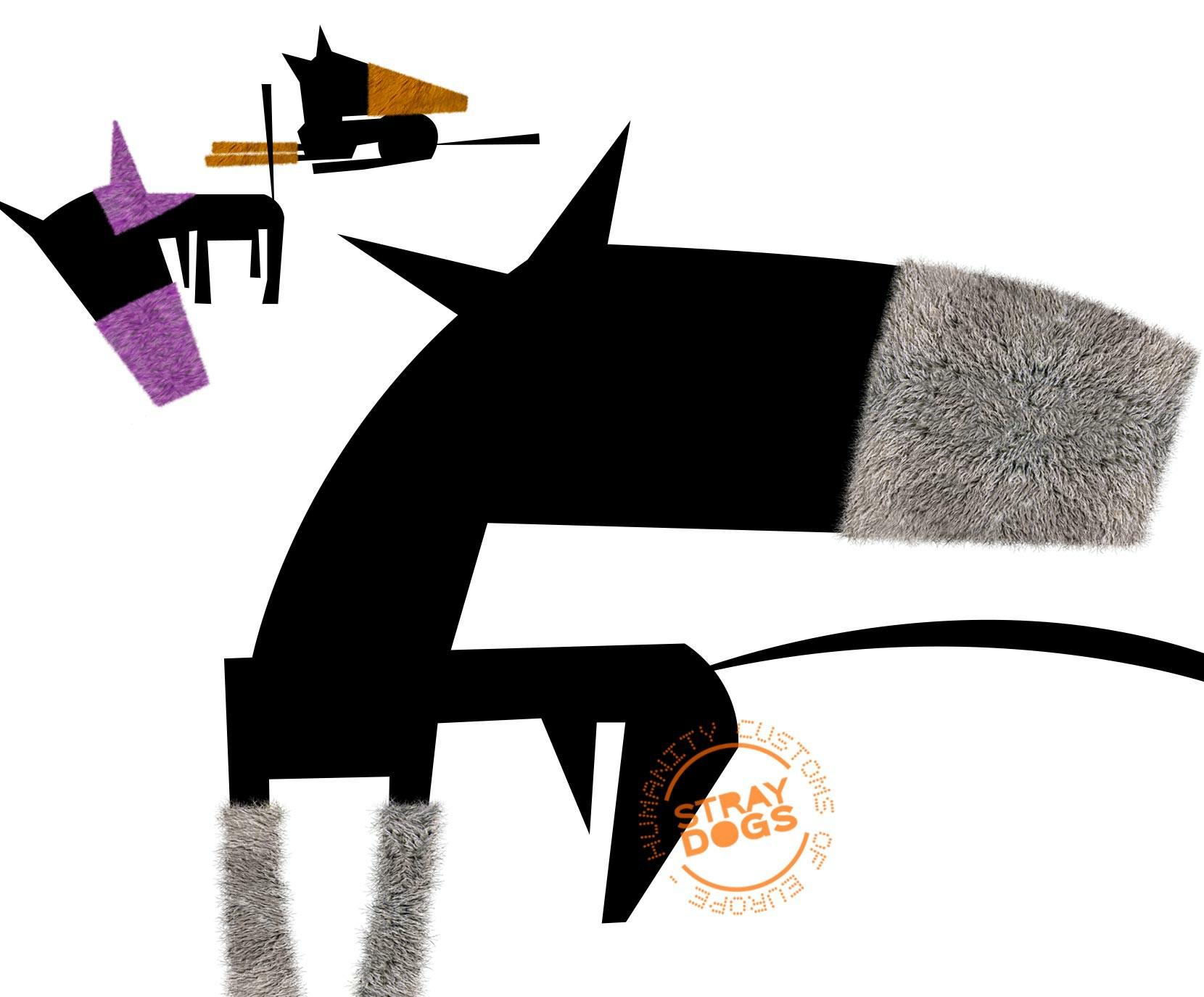 silvio-cocco-stray-dogs-project